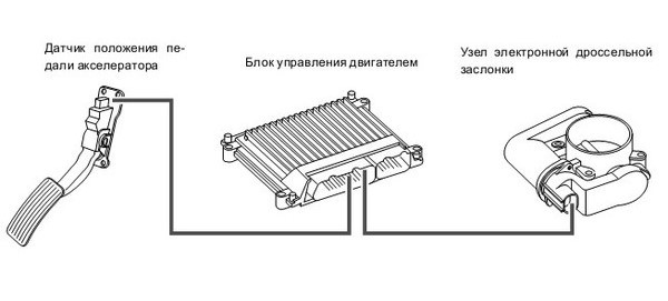 shema-pedal-booster-gaza (1)