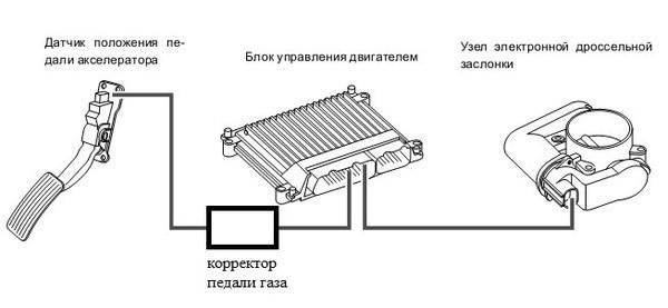shema-pedal-booster-gaza (2)